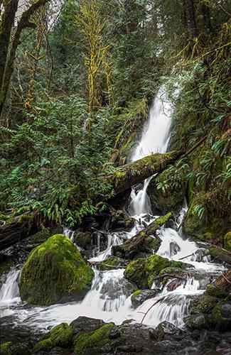 Merriman Creek Falls