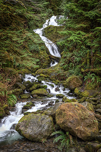 Bunch Creek Falls