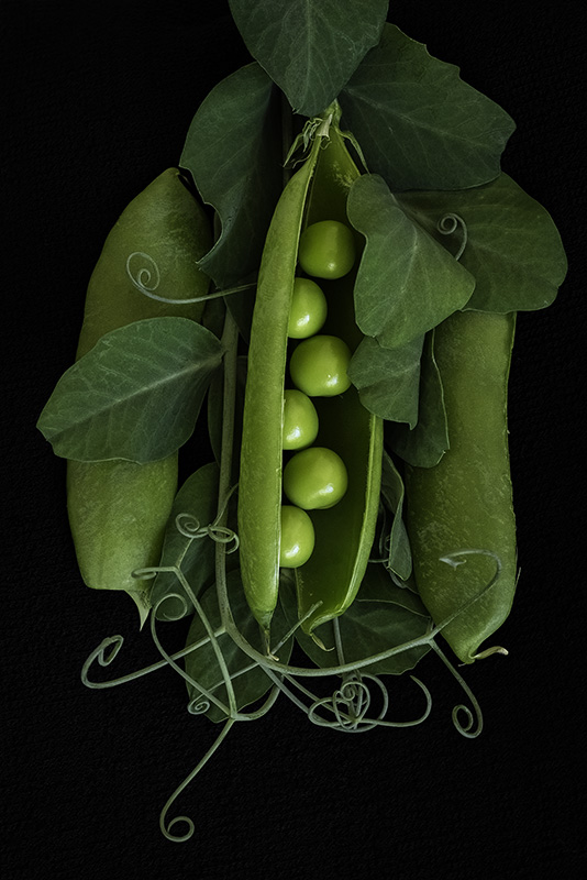 Peas in a Pod - 800px
