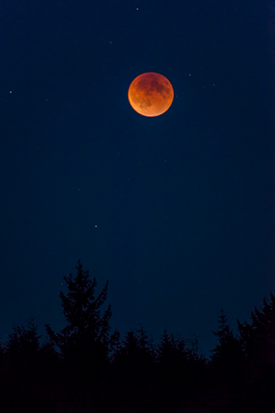 Super-Harvest Blood Moon
