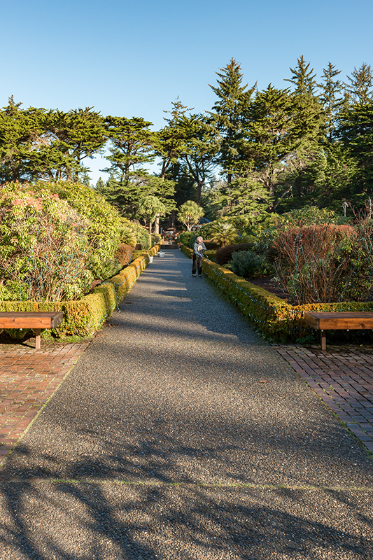 Shore Acres Garden Main Walkway